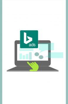 Bing Adwords Management