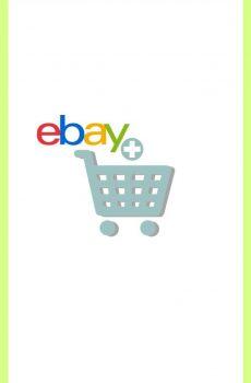 E-Commerce eBay Add on