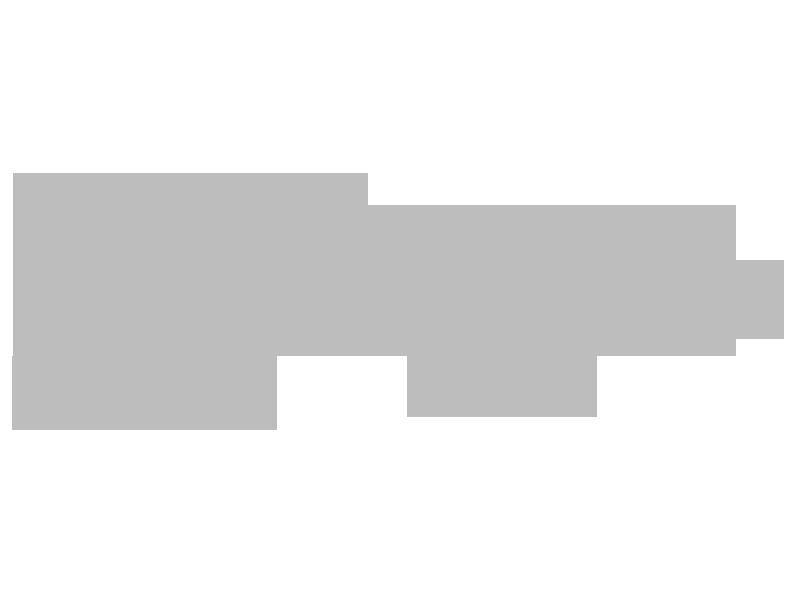 lady sapiens